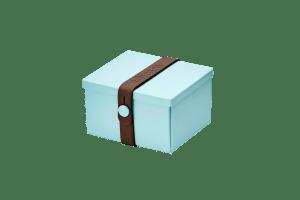 Uhmm Box Quadrada Verde Menta - Castanha